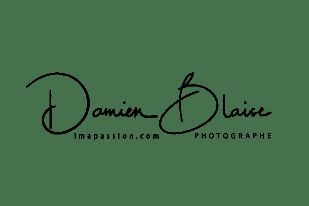 Logo damien blaise - Imapassion