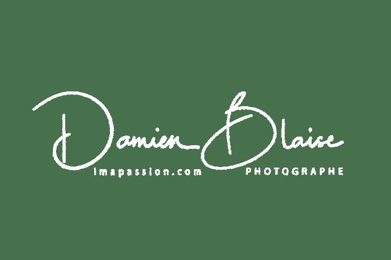 Logo Damien BLAISE blanc